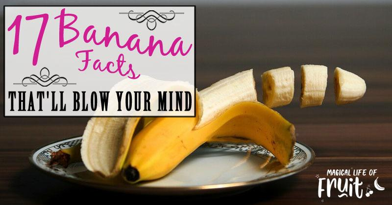 17 Banana Facts That'll BLOW YOUR MIND