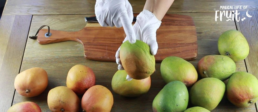 When Is A Mango Ripe? - 6 Easy Signs